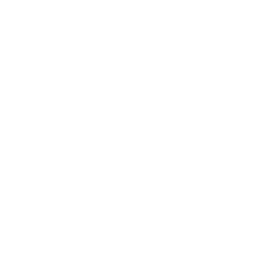 SIBA reverse 260